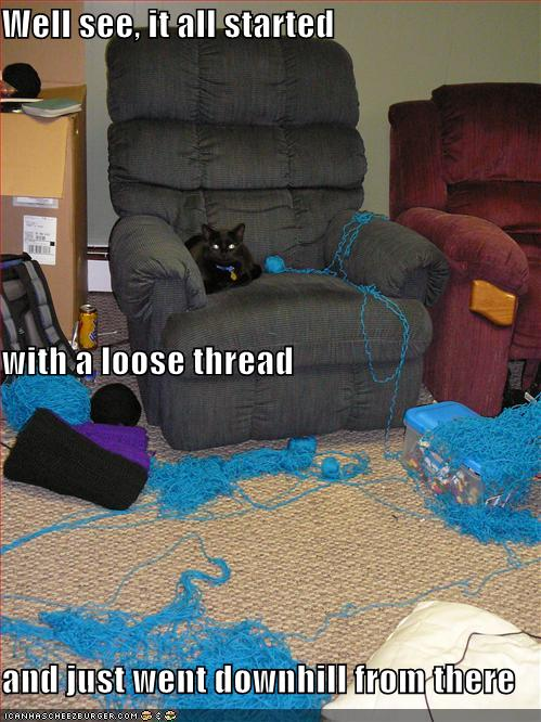 2008 11 Funny-Pictures-Cat-Has-Unraveled-All-Your-Thread